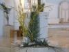 domenica-palme-2010-3