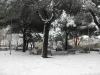 2012-02-neve-quartiere_09